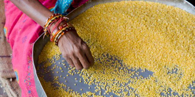 Jaipur, Rajasthan,