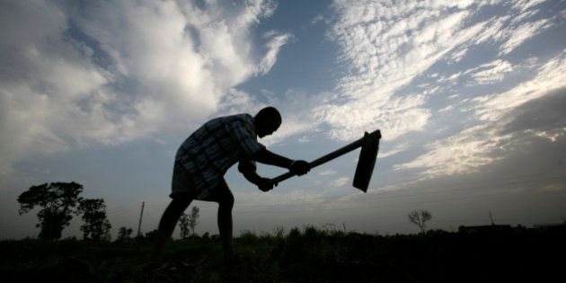 A farmer is silhouetted as he works on a piece of arid land on the outskirts of Amritsar, India, Wednesday,...
