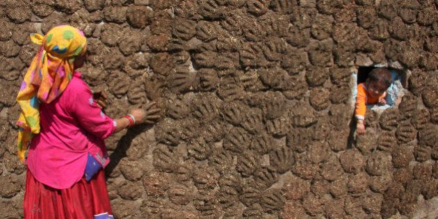 A woman pastes cow dung cakes on a wall as her grandson Sanju peeps from a hole in Molaya village on...