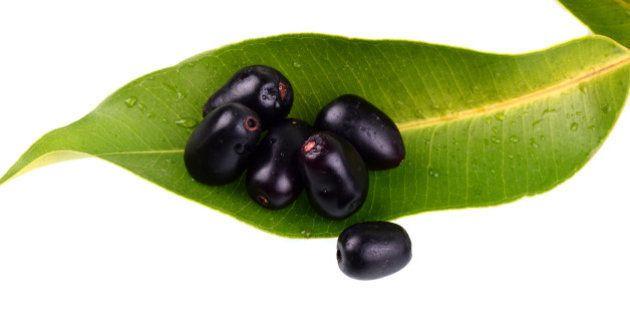 Jambul or Jamun (Syzygium cumini) with leaf isolated on white