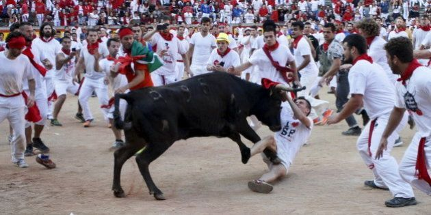 A wild cow charges at a reveller after the last running of the bulls of the San Fermin festival in Pamplona,...