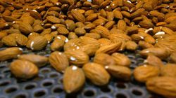 Young Indians Snack On Almonds, Fruits When Happy, Finds
