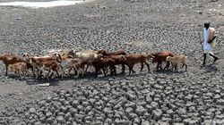 Centre Approves Over Rs 2,553 Crore For Three Drought-Hit