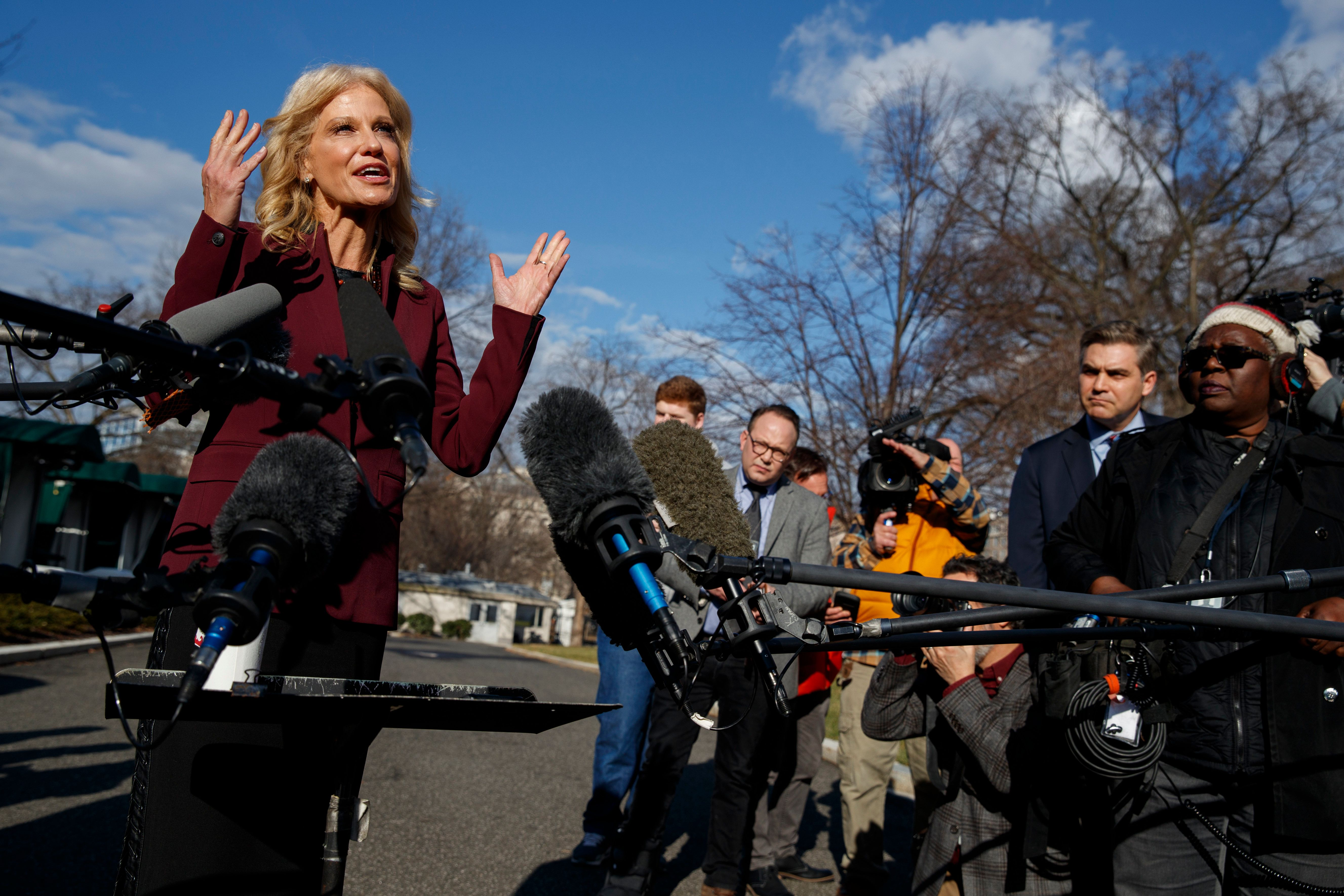 White House senior adviser Kellyanne Conway talks with reporters outside the White House, Tuesday, Jan. 8, 2019, in Washington. (AP Photo/ Evan Vucci)