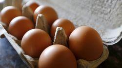 Gesundheitsgefahr: Deshalb solltet ihr Eierkartons nicht