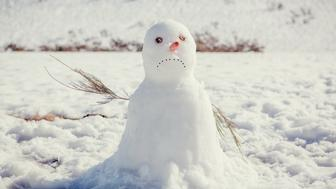 sad snow man
