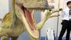 Vende-se uma jaula para Velociraptors. Tratar