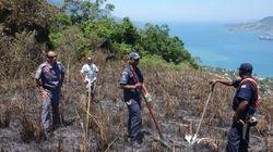 VEJA: Parque Estadual é atingido por incêndio em