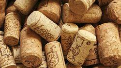 7 clubes de vinho para nunca mais ficar em pânico no