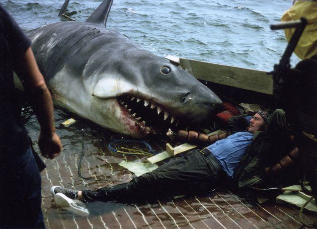 11 imagens que vão curar o seu medo de filmes de terror