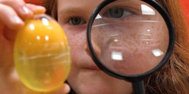 Die sechsjaehrige Malin Walter aus Berlin untersucht am Dienstag, 3. April 2007 im Exploratorium Potsdam...