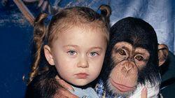 FOTOS: Mãe cria ensaio INCRÍVEL da filha interagindo com animais selvagens durante 12
