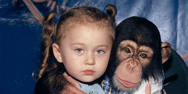 Mãe cria ensaio INCRÍVEL com filha interagindo com animais selvagens durante 12 anos - e o transforma...