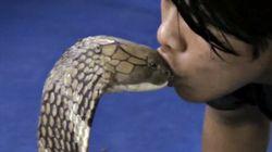 Momentos de tensão: homem dá beijo de língua em