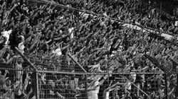 Copa do Mundo: racismo será combatido pelo governo com campanha