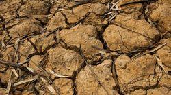 Contagem regressiva da água: São Paulo vai parar em ___