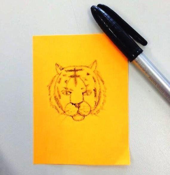 Como desenhar um tigre a partir de um pênis