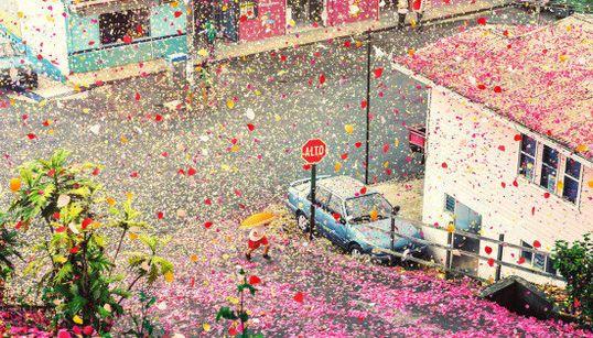 Não é sonho: chovem pétalas de flores na Costa