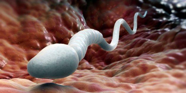 Cientistas transformam células da pele de homens estéreis em ...