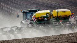 Queda da economia chinesa pode acelerar exportações de grãos no