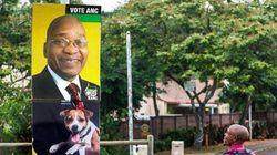Organização surfa em eleições para fazer campanha de