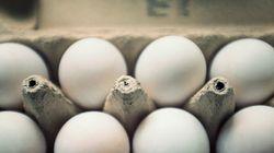 4 motivos para dizer não aos ovos