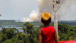 Governo não admite, mas o desmatamento está correndo solto na