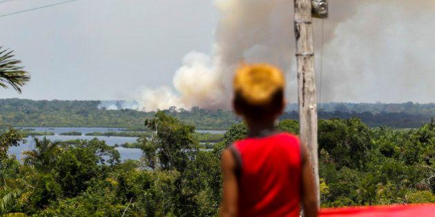 Desmate na Amazônia sobe 290% em setembro em relação a um ano atrás, diz