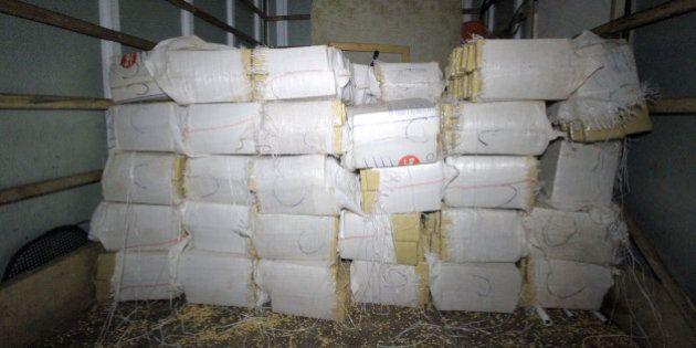 Polícia apreende quase duas toneladas de maconha em sede da Gaviões da