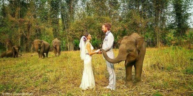 Noivos viajam pelo mundo para se casar 38 vezes, em doze países, passando por cinco