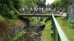 Fim de semana: descubra os rios invisíveis de São