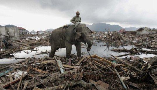 FOTOS: Ásia lembra devastação do tsunami de 2004 com lágrimas e