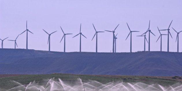 De vento em