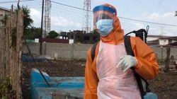 OMS: Mais de 20 mil casos de Ebola na África em