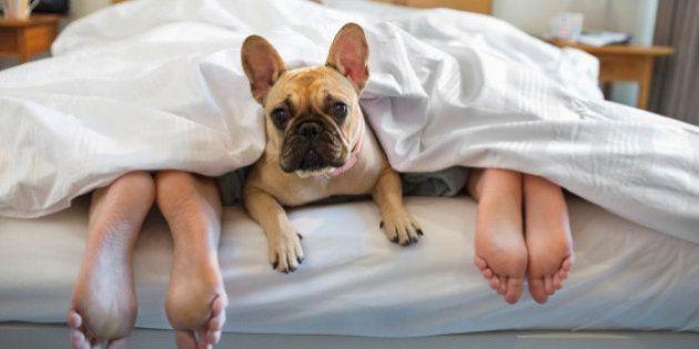 Por que você sente cansaço após uma boa noite de