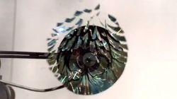 Vídeo mostra a explosão de um CD mais lenta já
