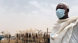 Mortes por Mers ultrapassam 280 pessoas na Arábia