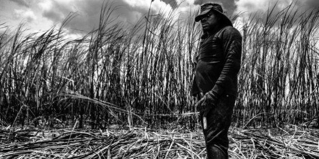 Trabalho escravo resiste nos canaviais da Bahia