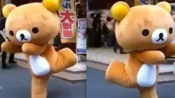 Quanta fofura! Ursinho chinês encanta clientes