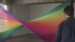 ASSISTA: Daltônicos enxergam cores pela primeira vez e ficam