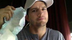 Ashton Kutcher pede fraldários