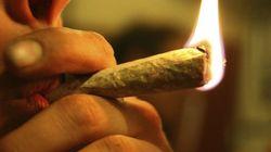 Uma nova pesquisa traz novidades a respeito da legalização da maconha nos