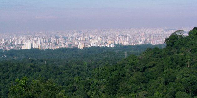 São Paulo não pode permitir retrocessos em sua legislação