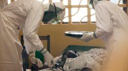 O Brasil corre risco de receber a epidemia do vírus Ebola? Especialistas