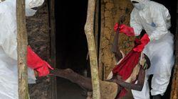 Ebola. Serra Leoa. 15 dias. 60 casos. Por