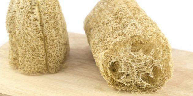 Usar bucha vegetal faz bem? Conheça os malefícios de tomar banho com