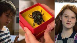 As primeiras imagens do filme 'O Escaravelho do