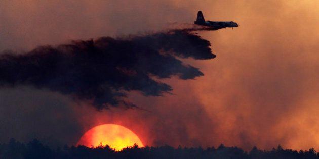 Ano de 2014 foi o mais quente já registrado na Terra, dizem cientistas dos