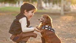 Crianças e Star Wars: 26 imagens do lado