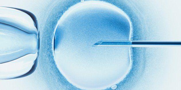 Doação de óvulos no Brasil é permitida, mas consegui-los não é